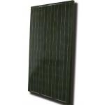 Modulul electric fotovoltaic IPPU-190W
